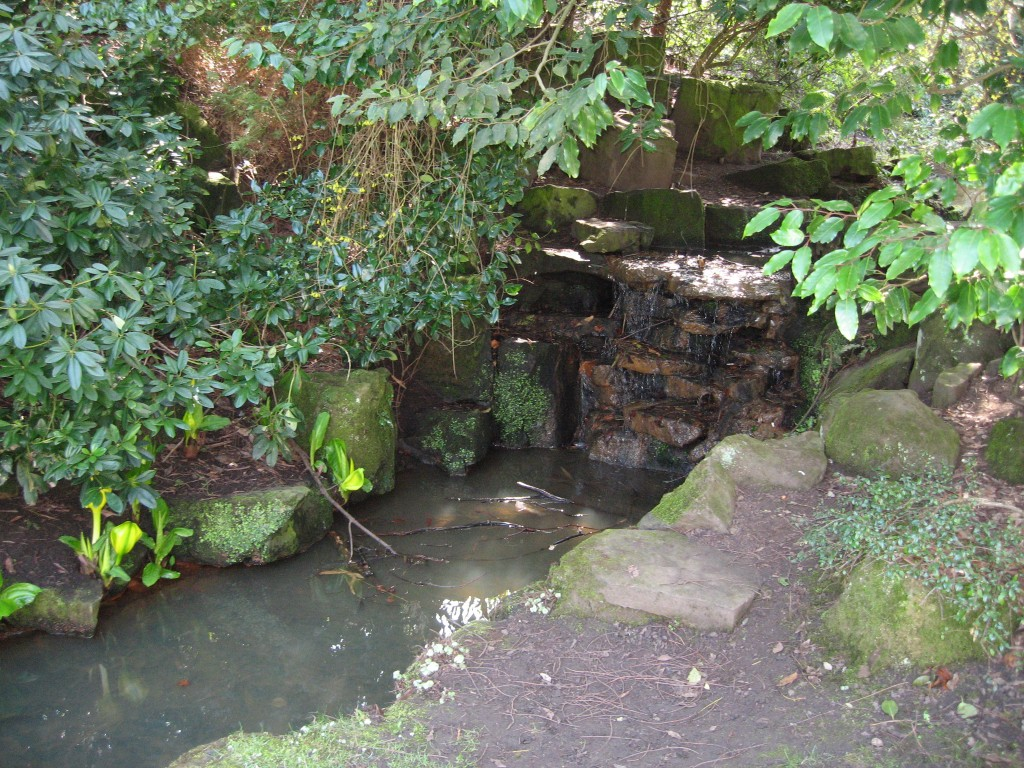 Brook at Valley Gardens, Harrogate