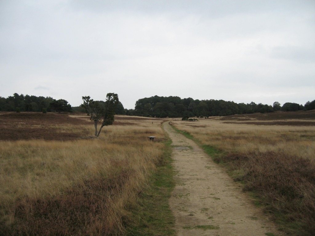 Heath path