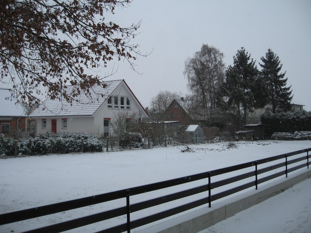 The meadow next door and some neighbour houses all covered in snow.