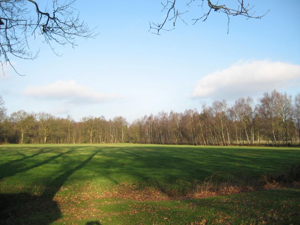 Teufelsmoor field