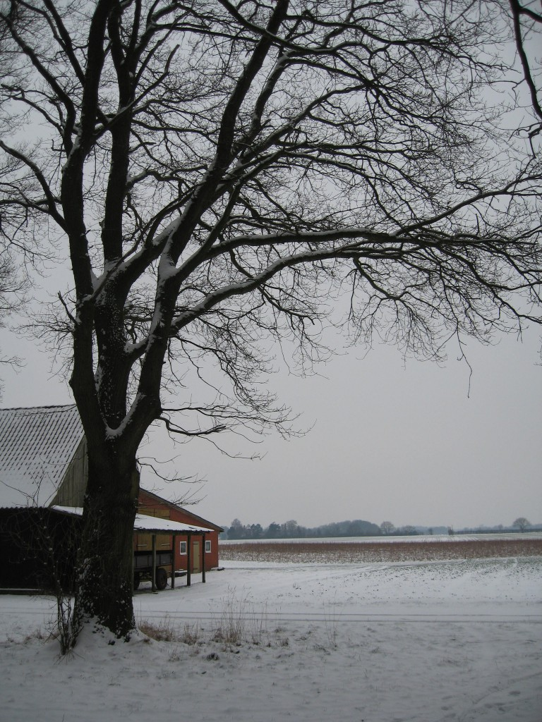 Snowy farmhouse