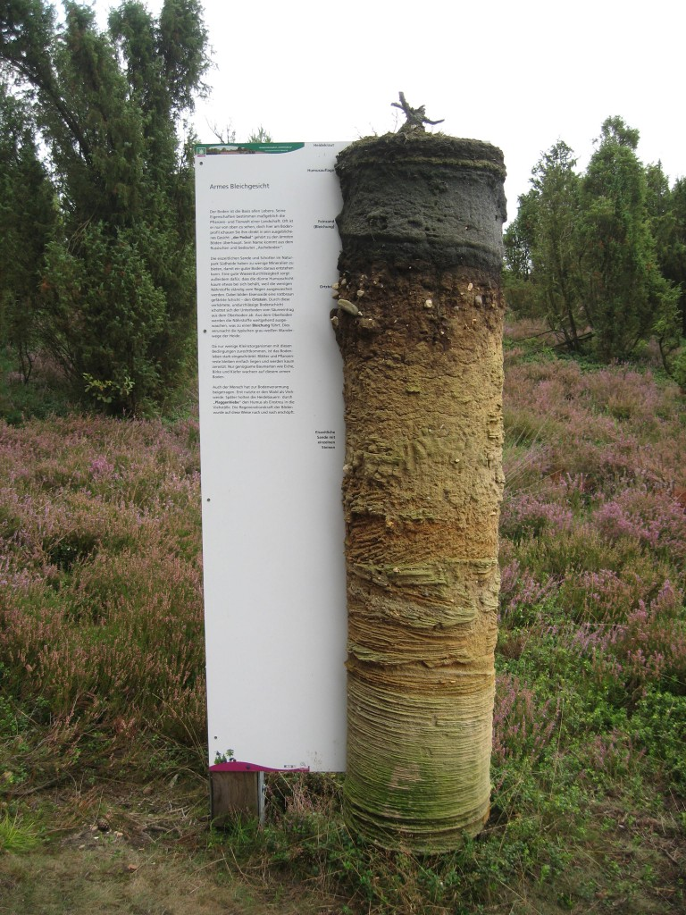 Südheide information display