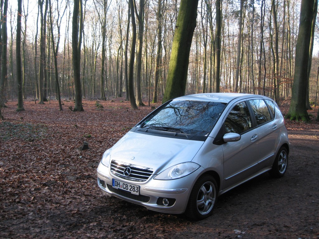 Car woods