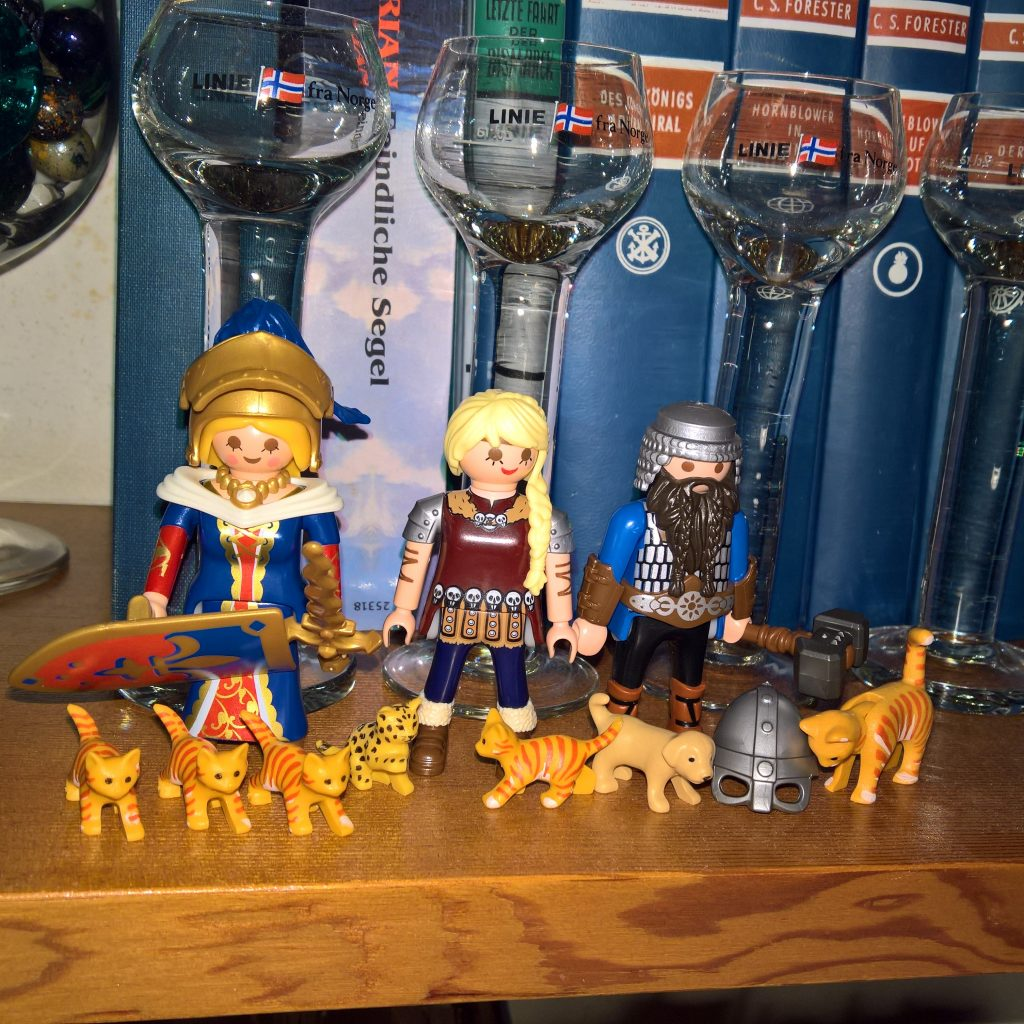 Playmobil warriors